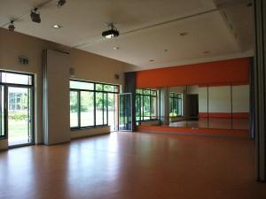 Großer Saal (80 m²)